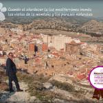 Marco-Soler-Embajador-Jijona-web