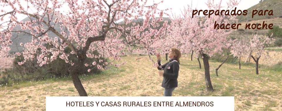 casa-rural-almendros-flor-alicante