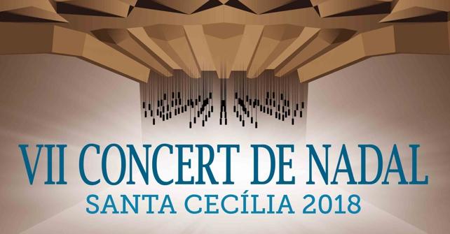 VII Concert de Nadal en el ADDA